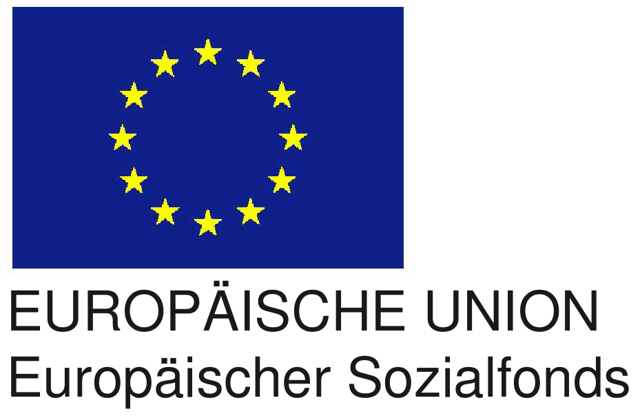 EU flag 2colors